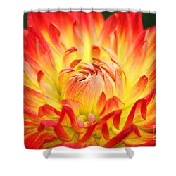 Img 0023 Flor En Rojo Detalle Shower Curtain