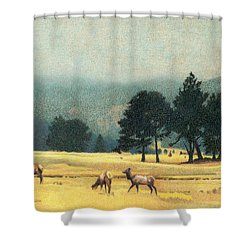 Impression Evergreen Colorado Shower Curtain