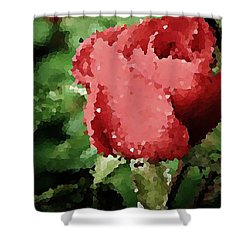 Impressionistic Rose Shower Curtain by Chris Berry