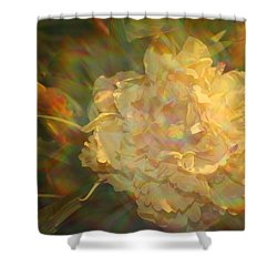 Shower Curtain featuring the photograph Impressionistic Rose by Dora Sofia Caputo Photographic Art and Design