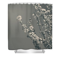In A Beautiful World Shower Curtain by Laurie Search