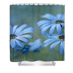 In A Corner Of A Garden Shower Curtain by Priska Wettstein