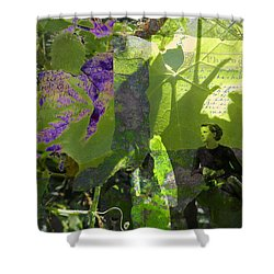 Shower Curtain featuring the digital art In A Dream by Cathy Anderson