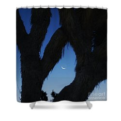 Shower Curtain featuring the photograph In-between by Angela J Wright