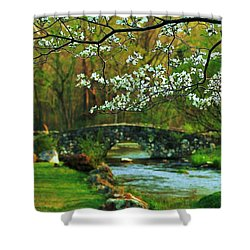 In Bloom Shower Curtain by Benjamin Yeager