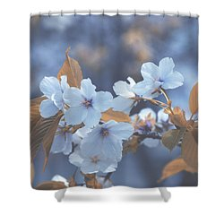 Shower Curtain featuring the photograph In Blue by Rachel Mirror