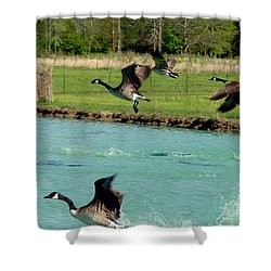 Canadian Geese In Flight Shower Curtain by Lesa Fine