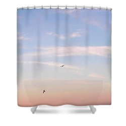Shower Curtain featuring the photograph In Flight Over Rehoboth Bay by Pamela Hyde Wilson
