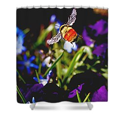 In Flight Shower Curtain by Rona Black