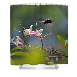 Shower Curtain featuring the photograph In Flight by Tara Potts