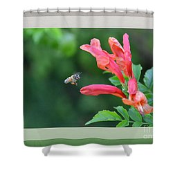 Shower Curtain featuring the photograph In For The Landing- Honeysuckle by Darla Wood