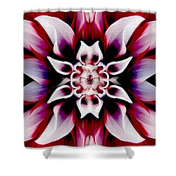 In Full Bloom Shower Curtain by Jon Neidert