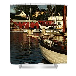 In Harbor Shower Curtain by Karol Livote
