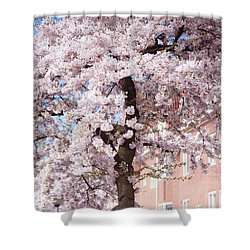 In Its Glory. Pink Spring In Amsterdam Shower Curtain