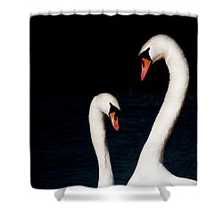 Shower Curtain featuring the photograph In Love by Laura Melis