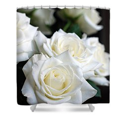 In My Dreams - White Roses Shower Curtain by Connie Fox
