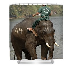 In Reverse Gear Shower Curtain by Bob Christopher