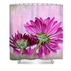 In Reverse Shower Curtain