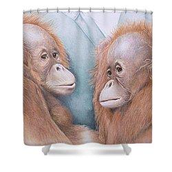 In Safe Hands - Orang Utans Shower Curtain