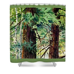 Shower Curtain featuring the painting In The Canopy by Donald Maier