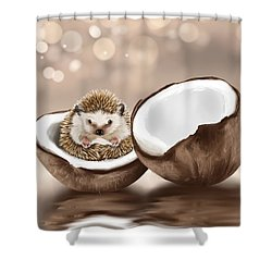 In The Coconut Shower Curtain