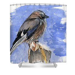 In The Cold Winter Night Shower Curtain by Angel  Tarantella