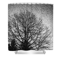 Shower Curtain featuring the photograph In The Dead Of Winter by Arlene Carmel
