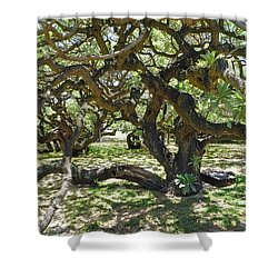 In The Depth Of Enchanting Forest I Shower Curtain by Jenny Rainbow