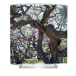 In The Depth Of Enchanting Forest II Shower Curtain by Jenny Rainbow