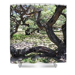 In The Depth Of Enchanting Forest V Shower Curtain by Jenny Rainbow