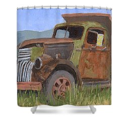 In The Dumps Shower Curtain