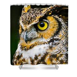 In The Eyes Shower Curtain