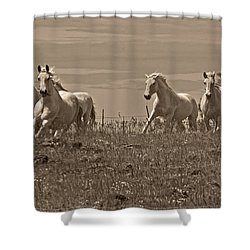 In The Field Shower Curtain by Wes and Dotty Weber