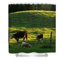 In The Field Shower Curtain by Randi Shenkman