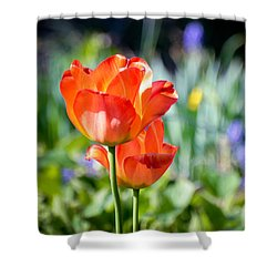 Shower Curtain featuring the photograph In The Garden by Kerri Farley