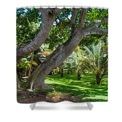 In The Garden. Mauritius Shower Curtain by Jenny Rainbow