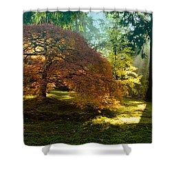 In The Gentle Autumn Light Shower Curtain by Don Schwartz
