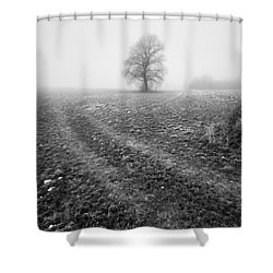 Shower Curtain featuring the photograph In The Mist by Davorin Mance