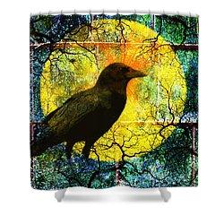 In The Night Shower Curtain by Nancy Merkle