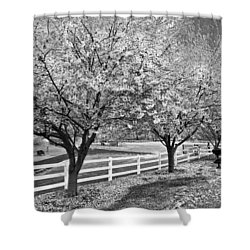In The Park Shower Curtain by Debra and Dave Vanderlaan