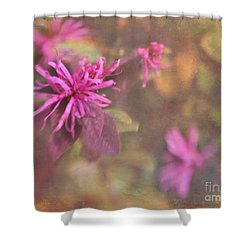 In The Pink Shower Curtain by Judi Bagwell