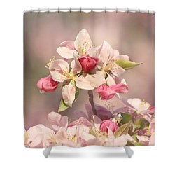 In The Pink Shower Curtain by Kim Hojnacki