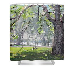 In The Shade Of The Big Tree Shower Curtain by Ylli Haruni