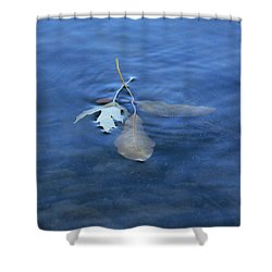 Shower Curtain featuring the photograph In The Stillness by Viviana  Nadowski