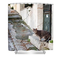 Shower Curtain featuring the photograph In The Streets Of Athens by Laura Melis