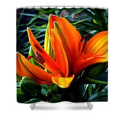 In The Tropics Shower Curtain by Karen Wiles