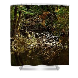 In The Wild Wood Shower Curtain by RC deWinter
