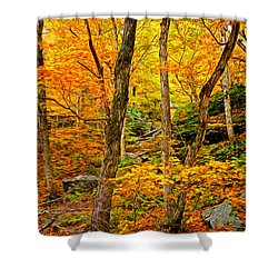Shower Curtain featuring the photograph In The Woods by Bill Howard