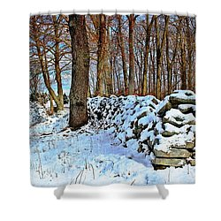 Shower Curtain featuring the photograph In The Woods by Judy Palkimas