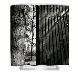 In This Space #1 Shower Curtain